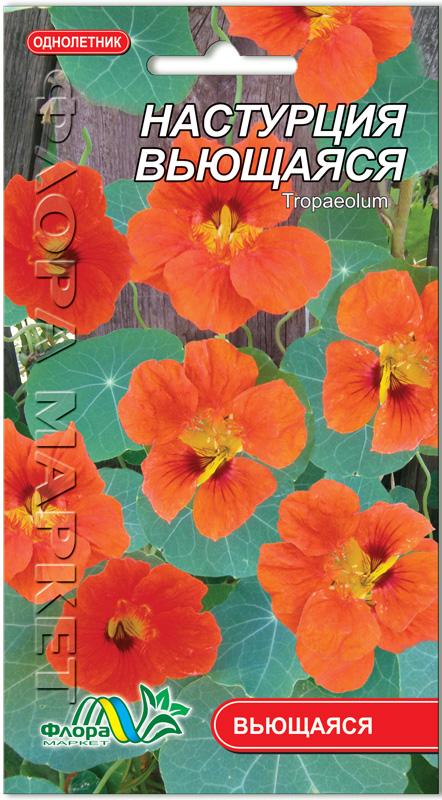 настурция семена вьющаяся фото бесплатные объявления новоалександровска