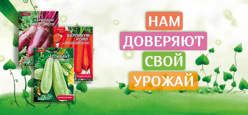 tsveti-optom-pokupka-v-ukraine