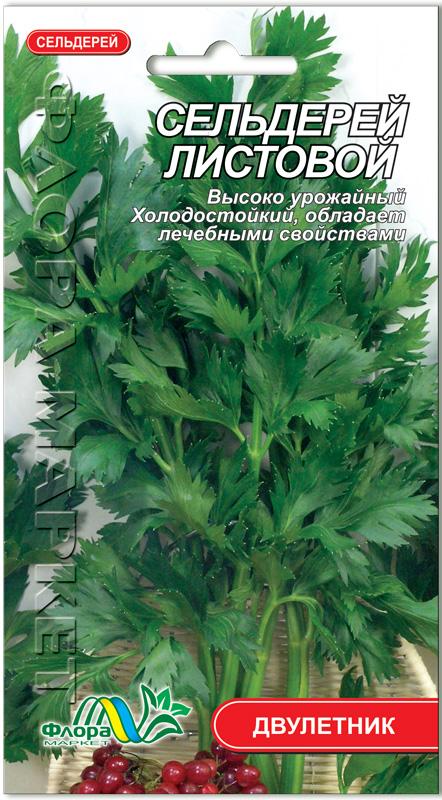 Как растет сельдерей листовой